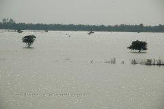 cambodja2004