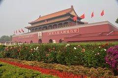 china1006