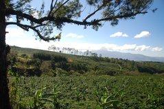 costarica2005