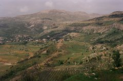 libanon1018