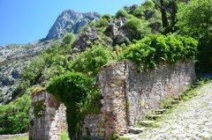 montenegro1059