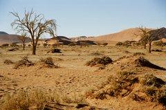 namibie1056