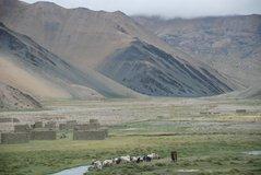 tibet1063