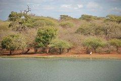 zuid-afrika2053